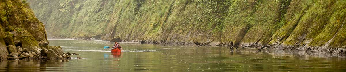 Explore The Whanganui River