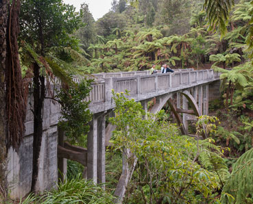 Bridge To Nowhere Whanganui River