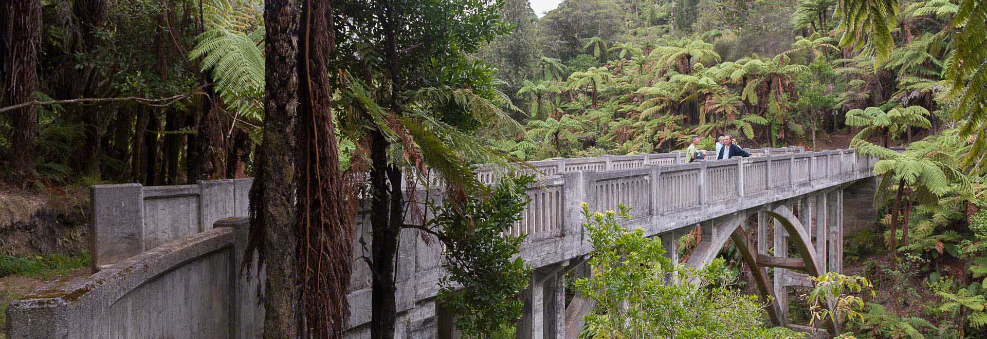 Bridge To Nowhere Whanganui